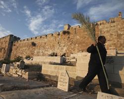 reconstructia templului